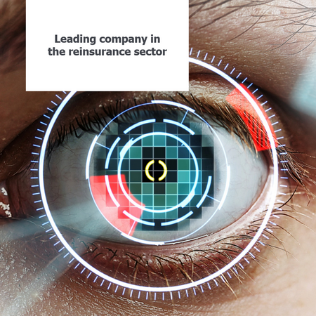 Leading company in the reinsurance sector